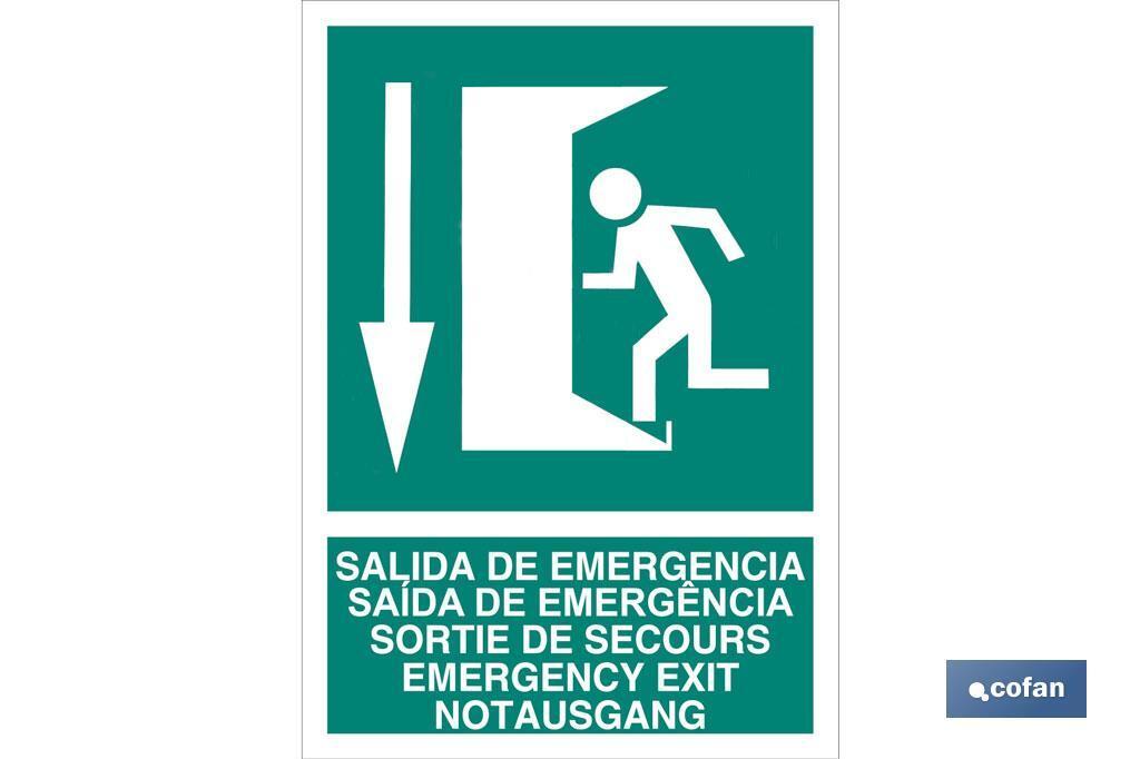 Salida de Emergencia Texto